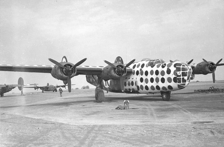 1024px-First_Sergeant_B-24D_Assembly_Ship_or_Judas_Goat